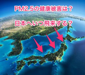日本へいつ?