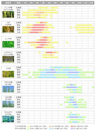 主な花粉症の原因植物と花粉飛散時期