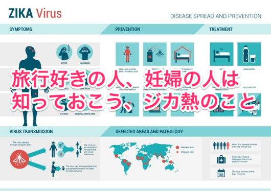 ジカ熱の症状とは? 妊婦や胎児への影響は? 日本での流行、感染可能性は?